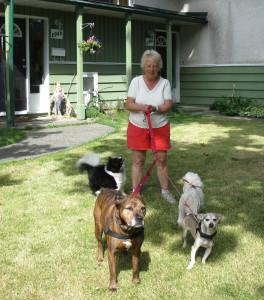 Blenda taking dogs for walk Website