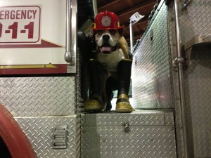 Romeo is on the quad ready to put out the fires!